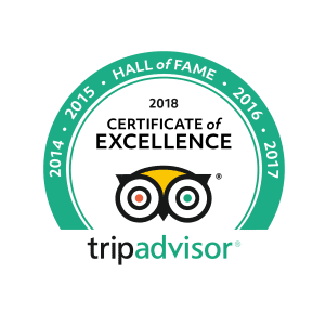 Hall of Fame Tripadvisor icon